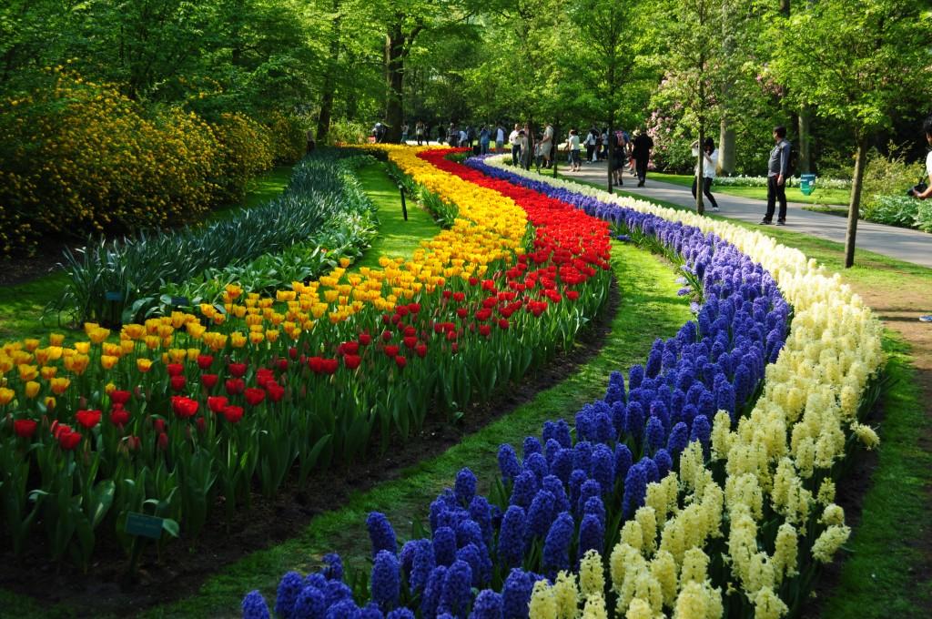 Expoziția de la grădina Keukenhof, artă florală în Olanda