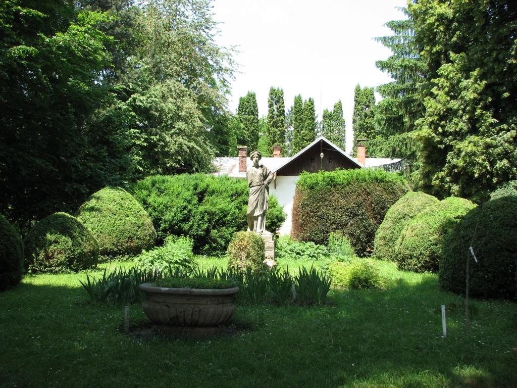 Grădina botanică din Cluj, o mare de verdeață
