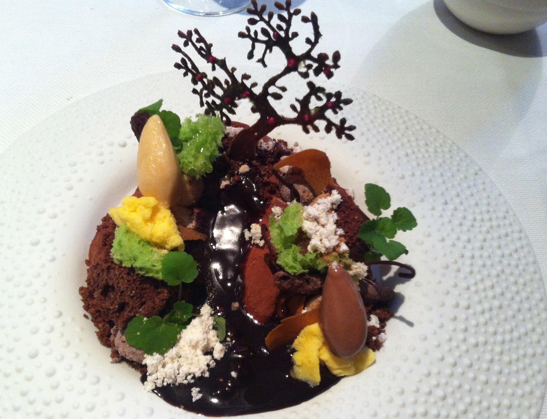 Botanique - Specialitate din ciocolată de la restaurantul cu specific Het Gebaar din Antwerp, Belgia