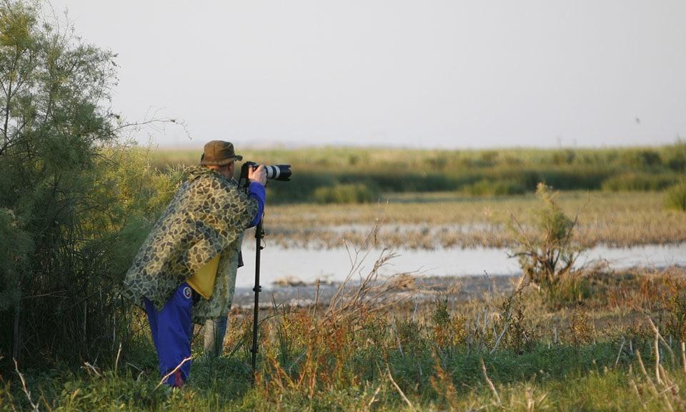 Delta Dunării - un loc ideal pentru Safari Foto