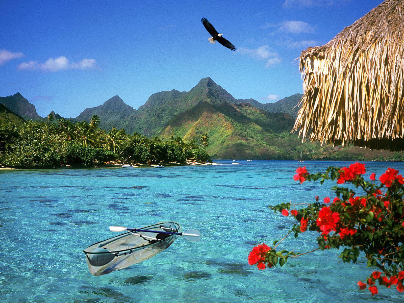 În sezonul cald, florile colorate evidențiază și mai mult frumusețea lacului