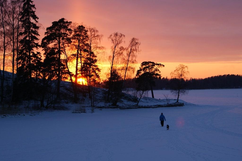 Insula Seurasaari într-o zi geroasă de iarnă