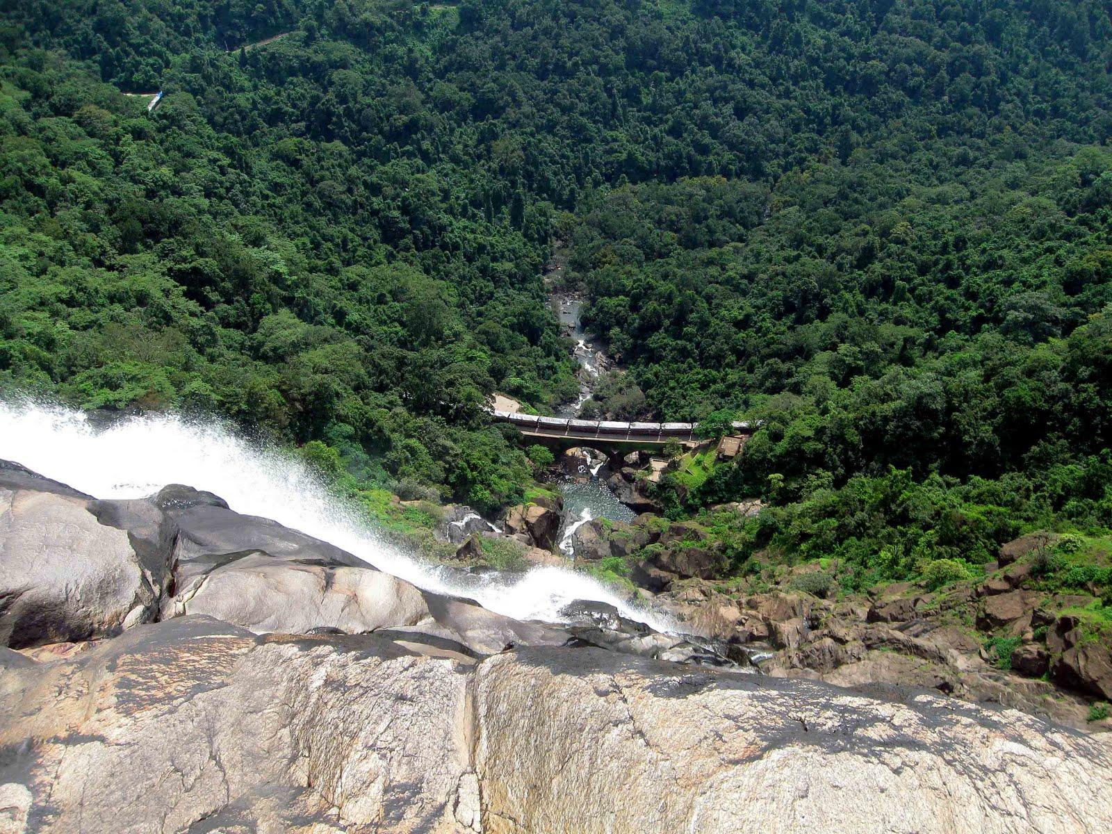 Parcul Național Mollem din Goa