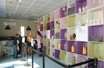 Ghidul muzeului explicând diferența dintre lavanda fină și lavandina