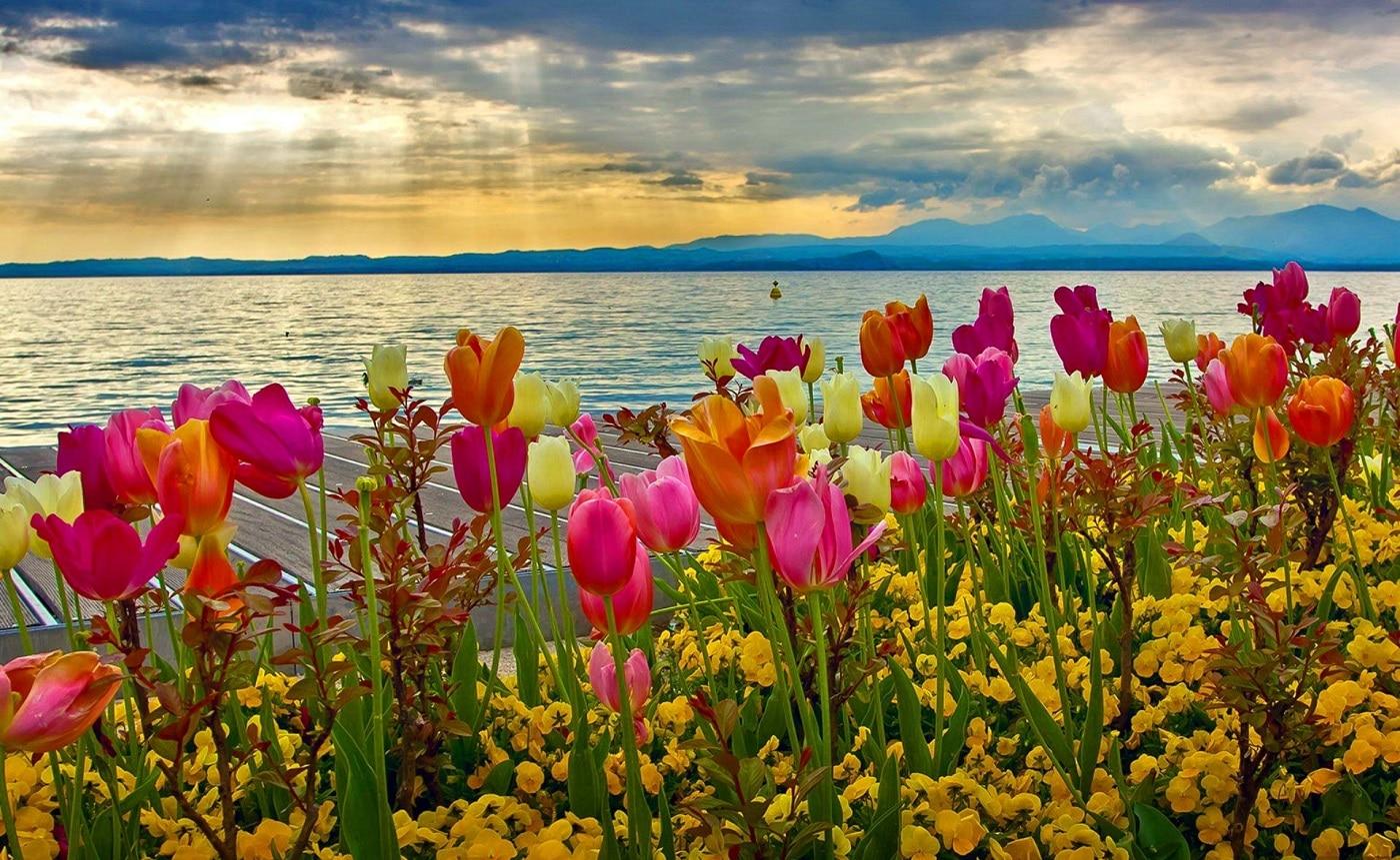 Apus de soare primăvăratic pe Lacul Garda