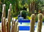 Majorelle Gardens, Raiul plantelor exotice