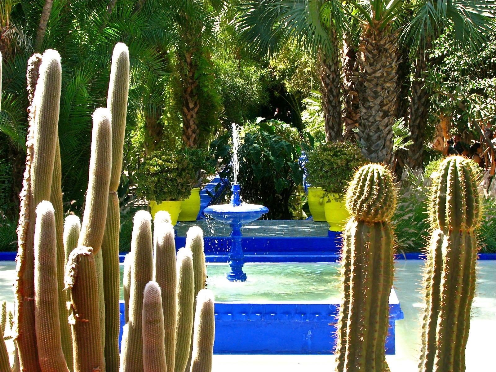 Majorellea Gardens, Raiul plantelor exotice