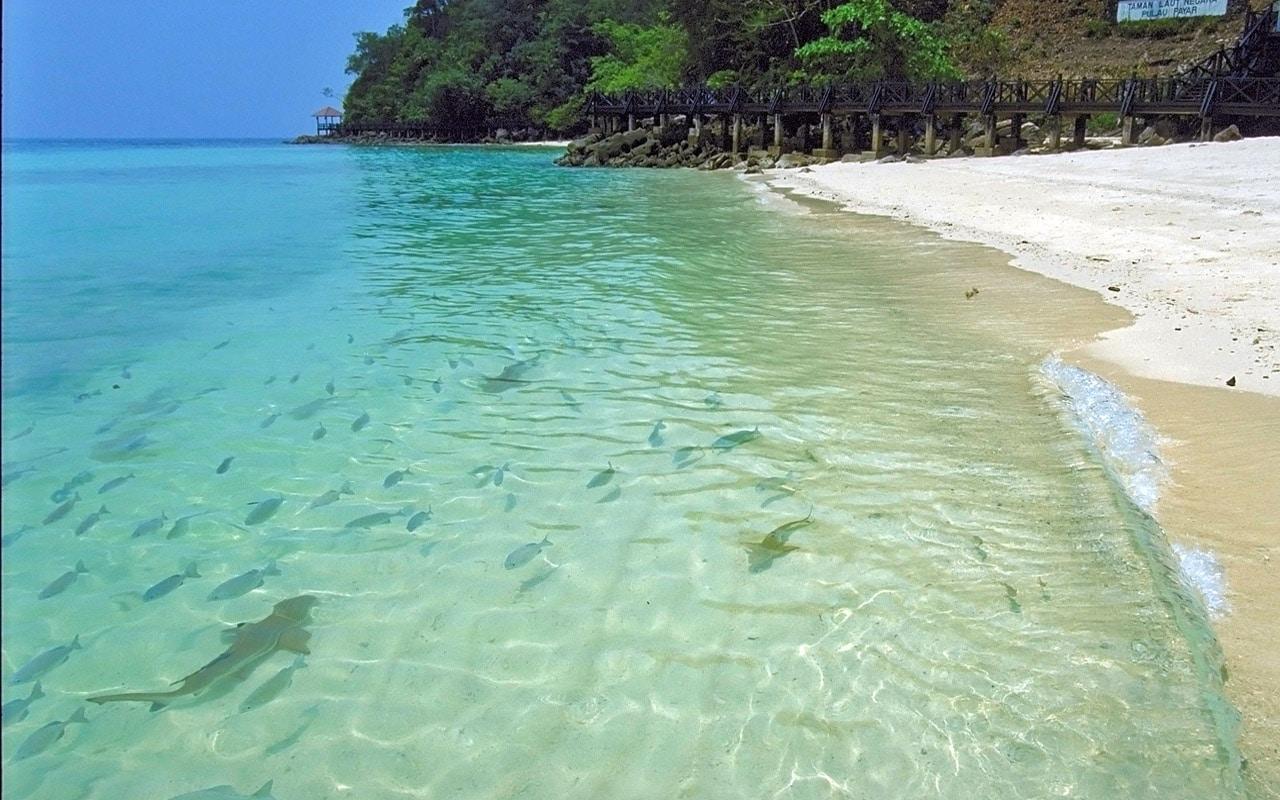 Plajele fine oferă turiștilor multe oportunități