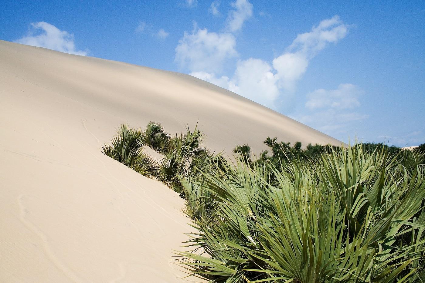 Imensele dune de nisip, o amprentă a regiunii