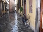 Mersul pe bicicletă este deja o activitate obişnuită pentru locuitori