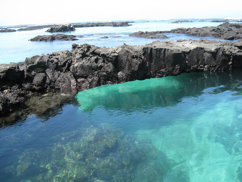 Regiunea este ideală pentru scufundări