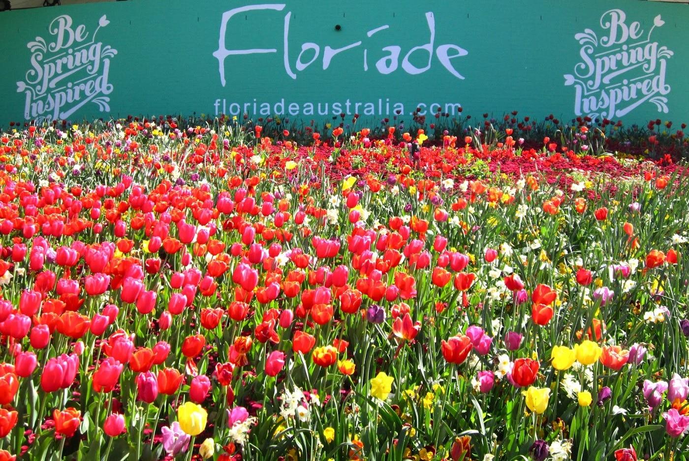 Floriade, un eveniment plin de energie şi culoare