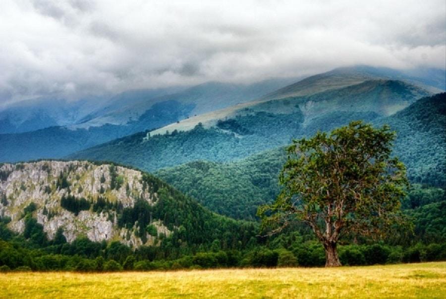 Vârful Gugu, cel mai înalt vârf din Munții Godeanu