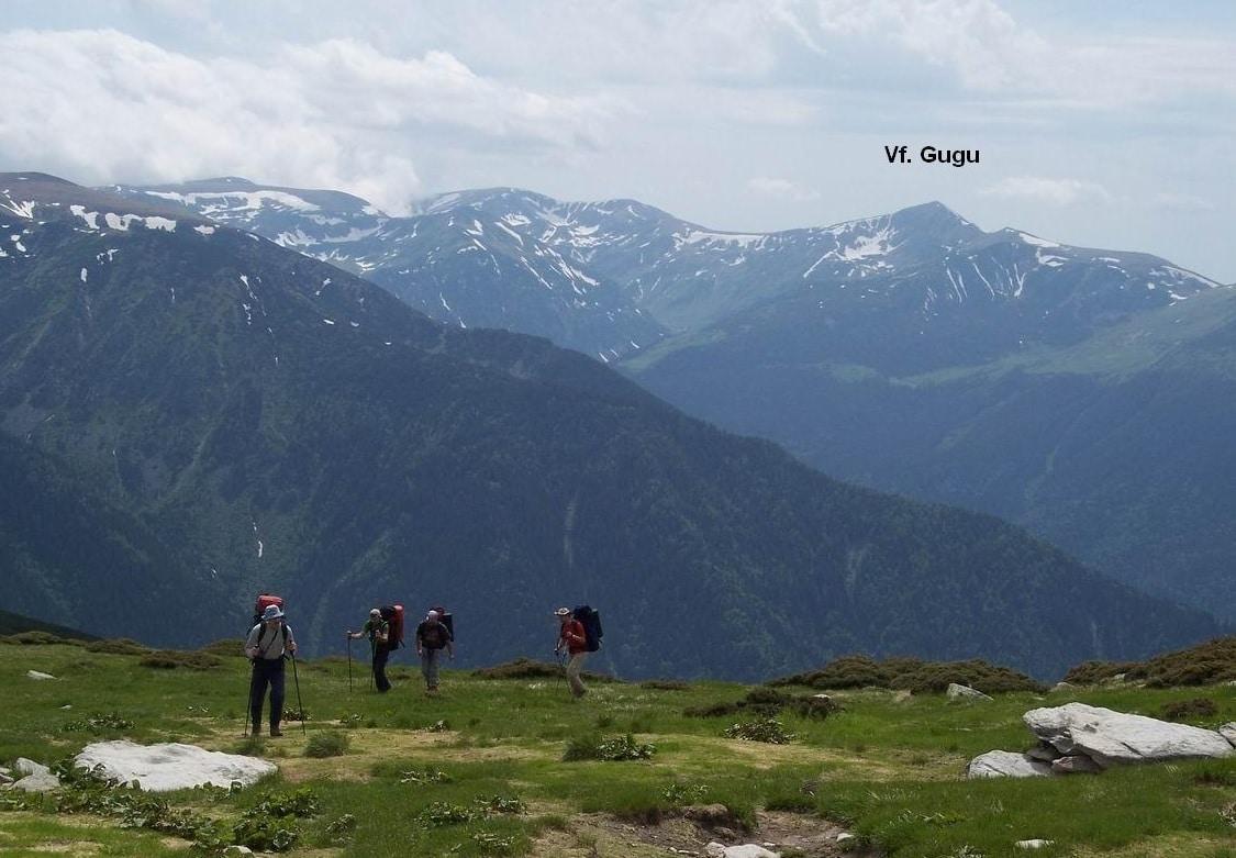 Imagine de ansamblu - Muntele Gugu