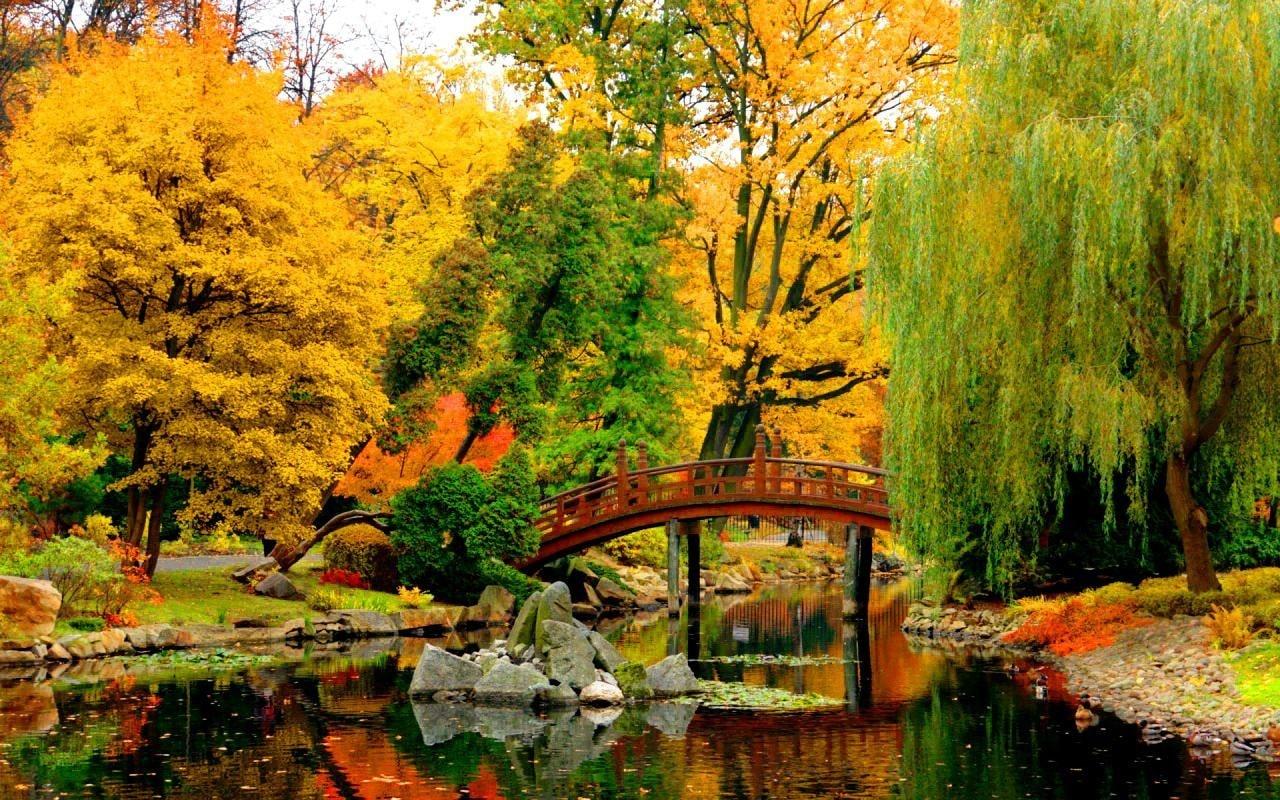 Grădină japoneză în Wroclaw