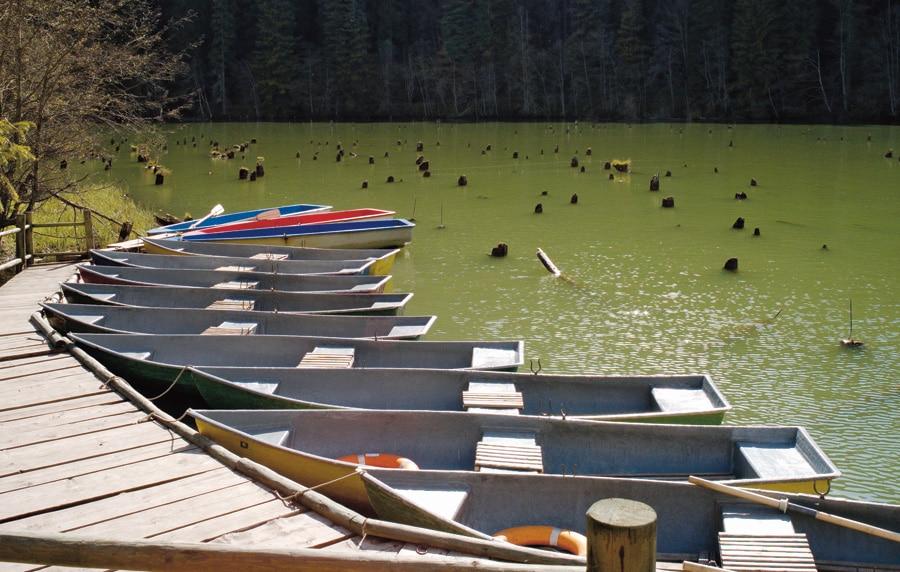 Plimbările cu barca oferă privelişti spectaculoase asupra întregii zone