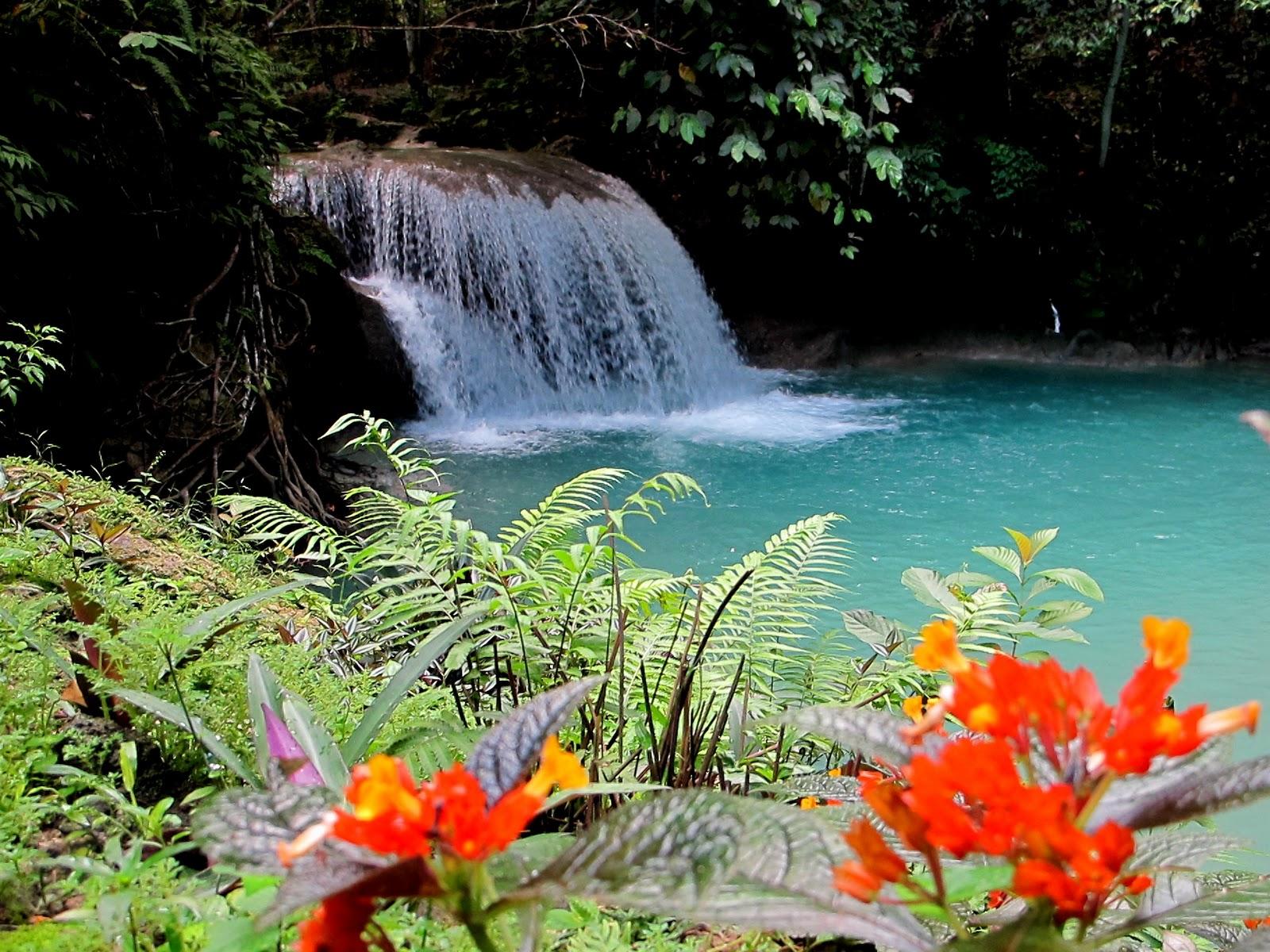 Kawasan, cea mai frumoasă cascadă din Filipine