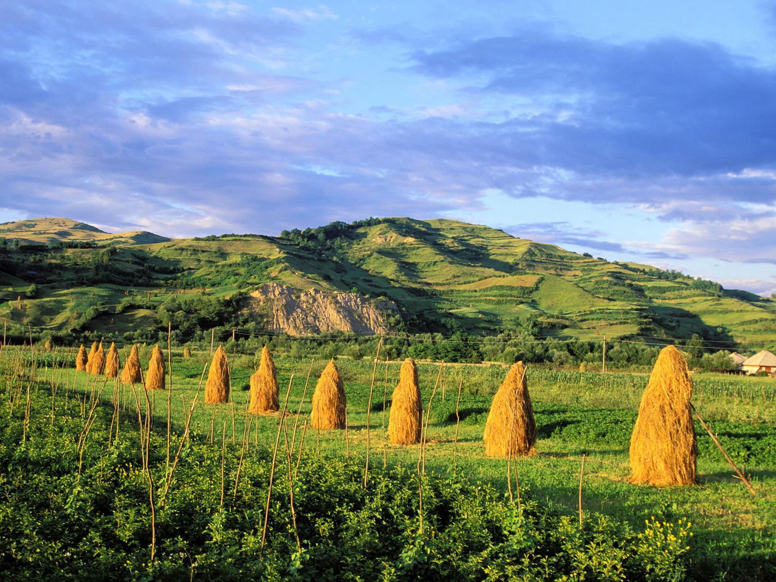 Maramureș, Țara Lemnului