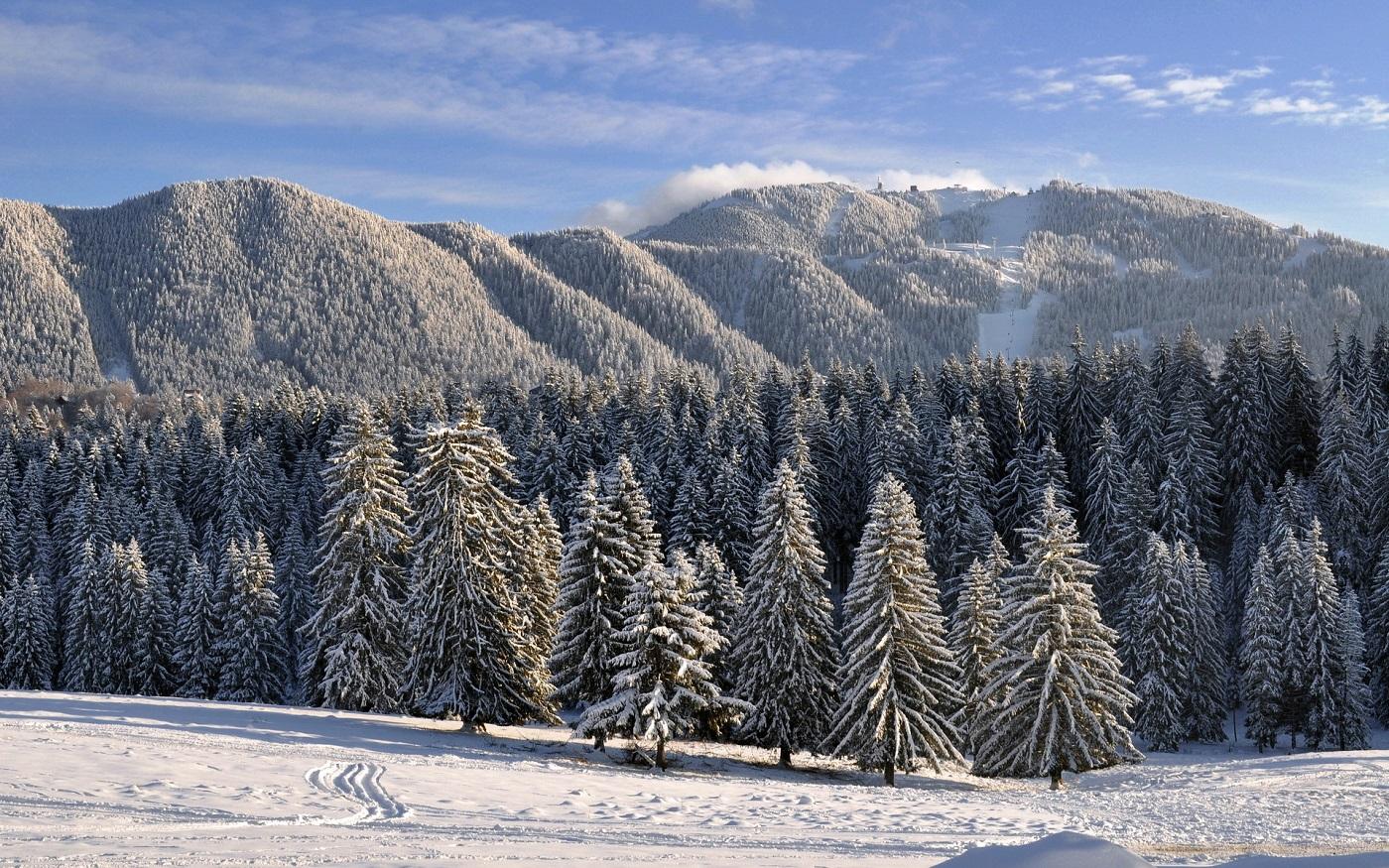 Peisaj de iarnă, Poiana Brașov