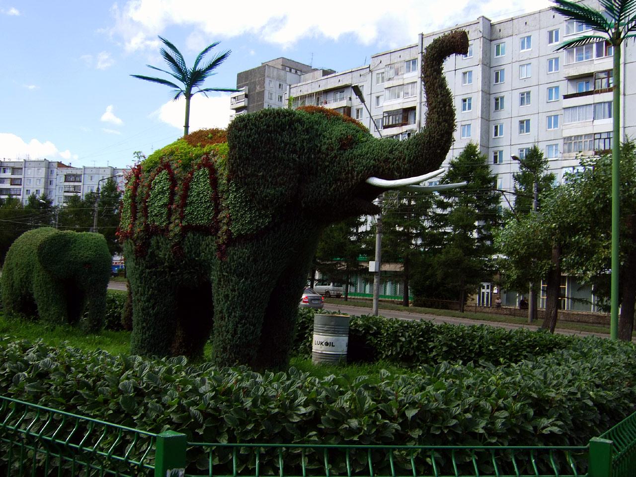 Krasnoyarsk, oraş verde