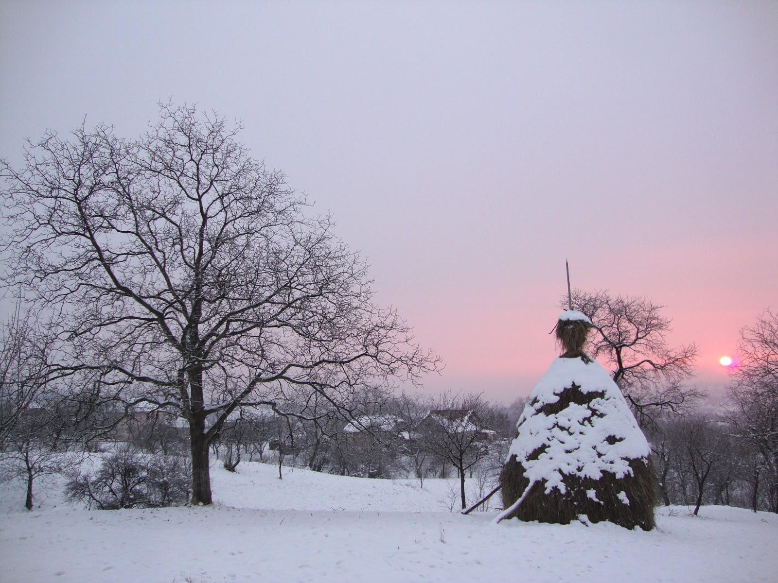 Peisaj de iarnă, Maramureş