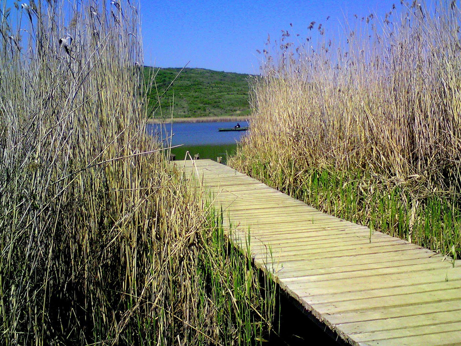 Lacul Știucilor, Județul Cluj, România