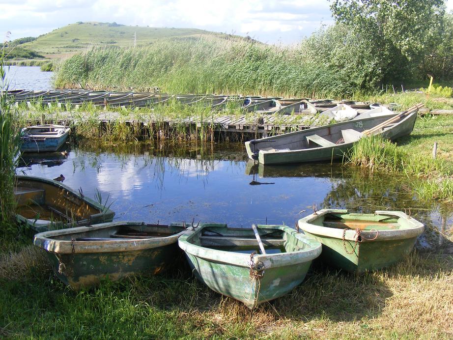 Plimbările cu barca oferă priveliști de vis!