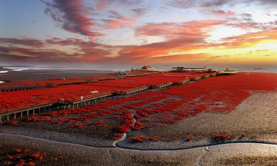 Odată cu venirea toamnei, zona se colorează într-un roșu aprins