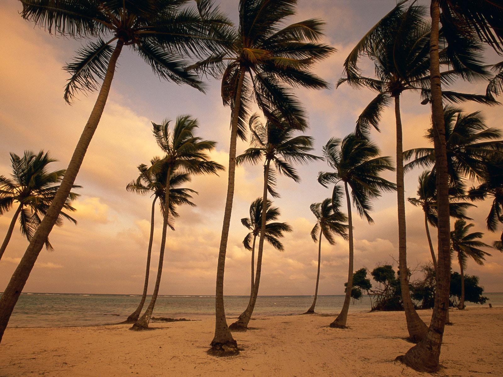 Peisajele exotice, motivul pentru care turiștii vizitează regiunea