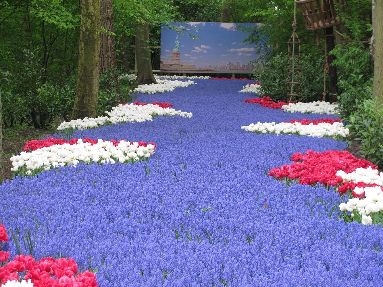 Parcul Keukenhof este unul dintre cele mai fotografiate parcuri din lume