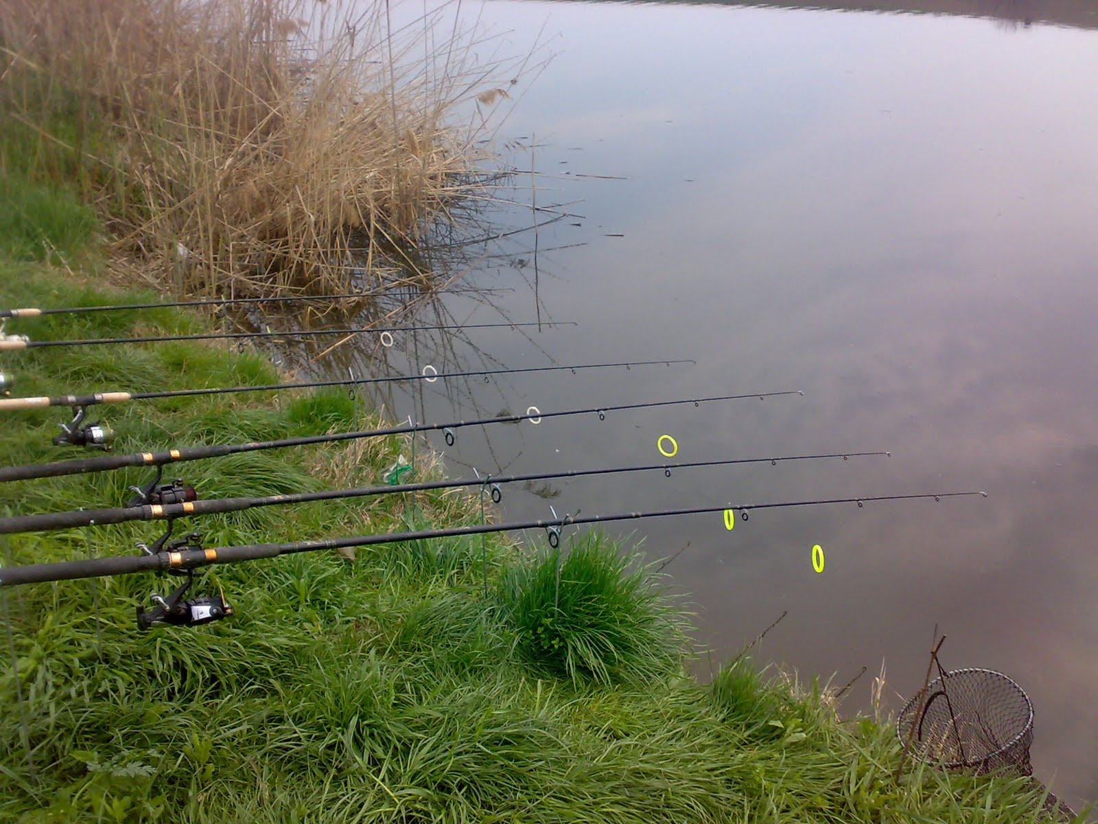 Pescuitul, o activitate îndrăgită de către amatori