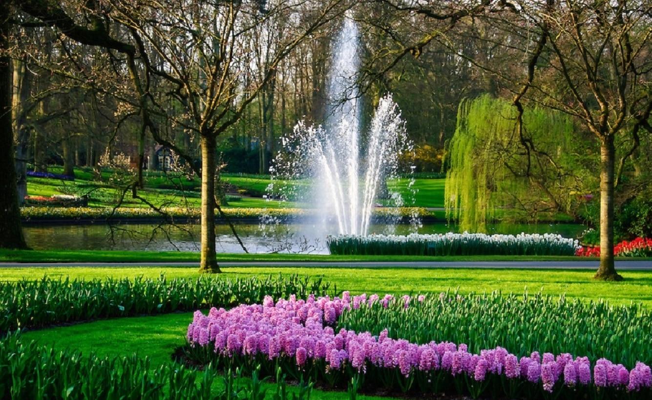 Fântânle arteziene dau un aer și mai spectaculos parcului