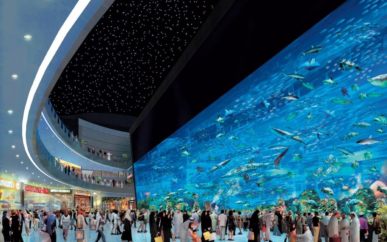 Dubai mall - Gazda celui mai mare acvariu din lume