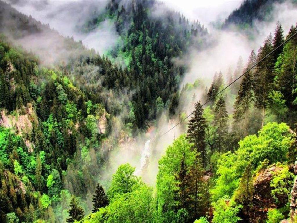 Munţii bine împăduriţi crează un orizont deosebit