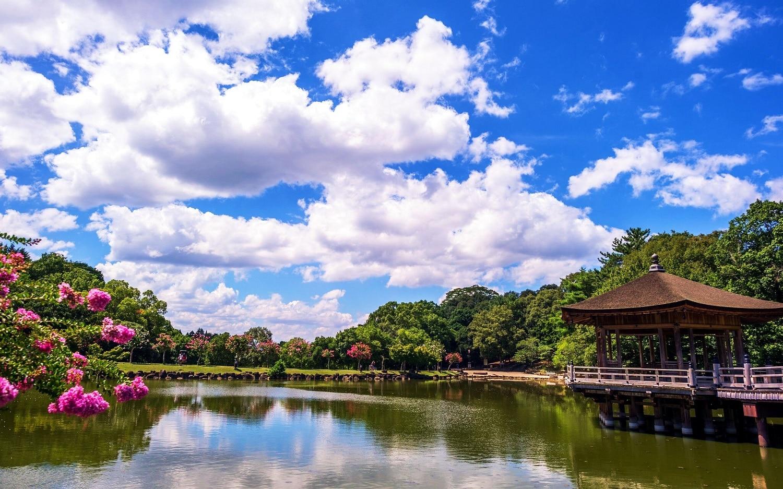Parcul Nara, oază de linişte în inima oraşului!