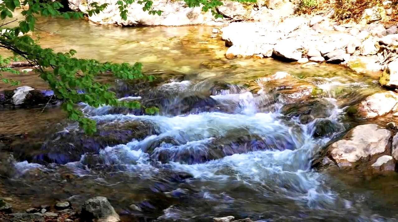 Susurul apelor te însoțește pretutindeni în Cheile Râmețului