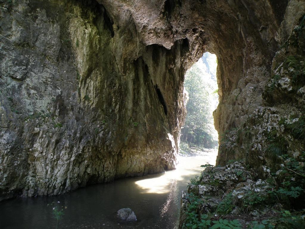 Cheile Râmețului - Una dintre cele mai spectaculoase rezervașii naturale din România