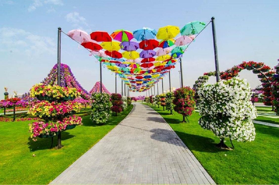 Alee cu flori și umbreluțe din Dubai Miracle Garden