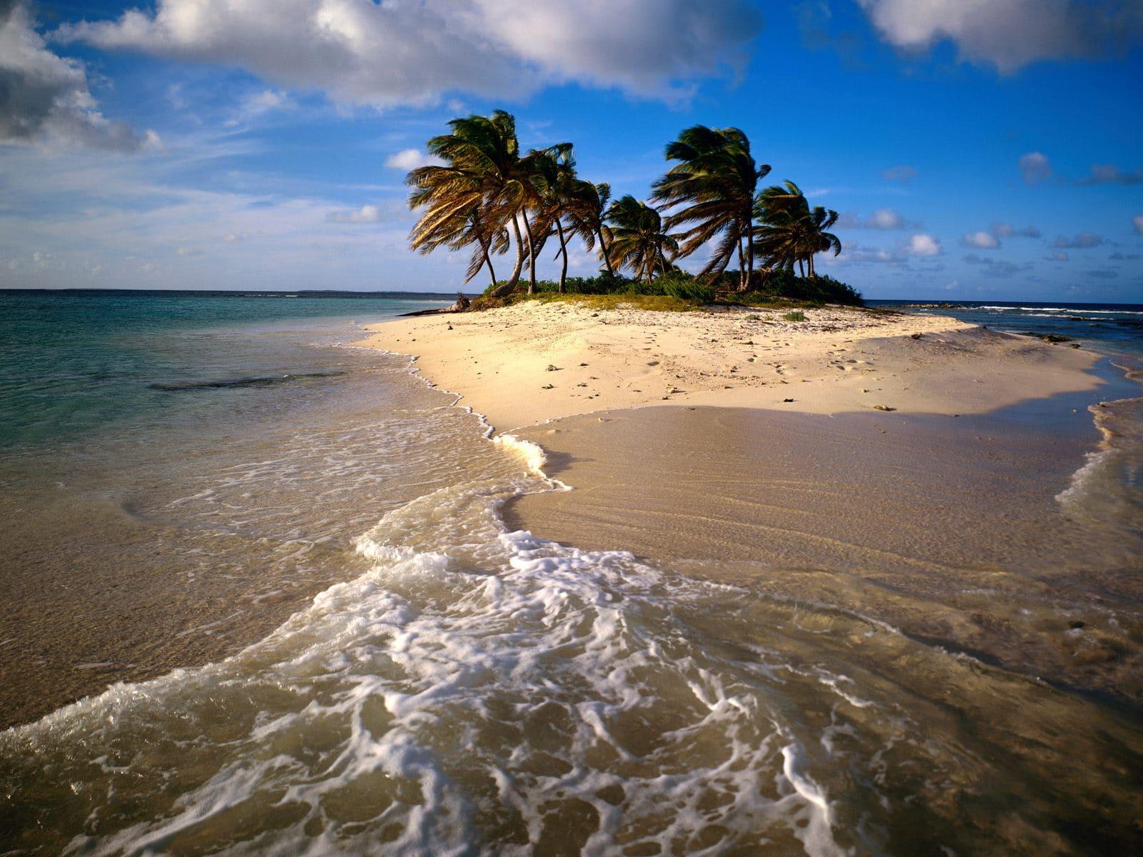 Plajele dominate de palmieri contrastează cu relieful vulcanic