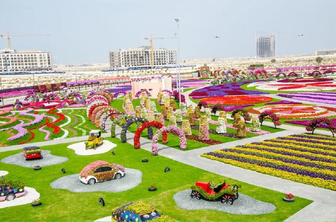Imagine de ansamblu asupra Dubai Miracle Garden