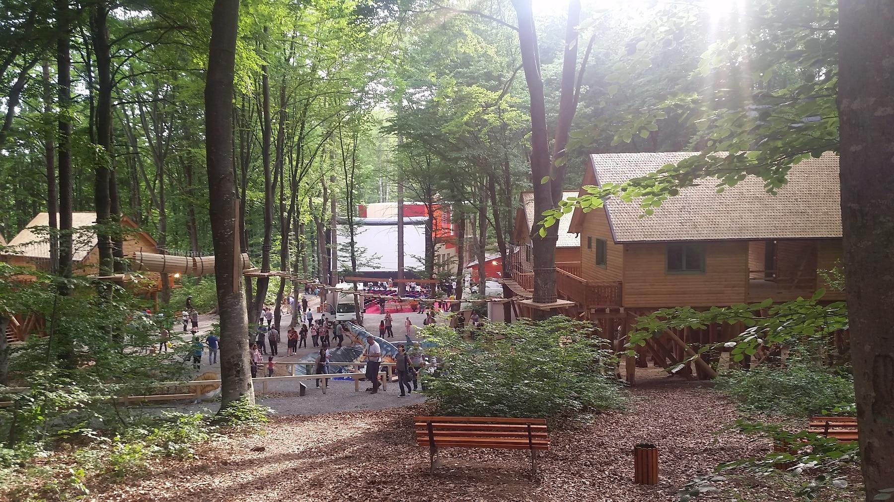 Imagine de ansamblu asupra Dino Parc
