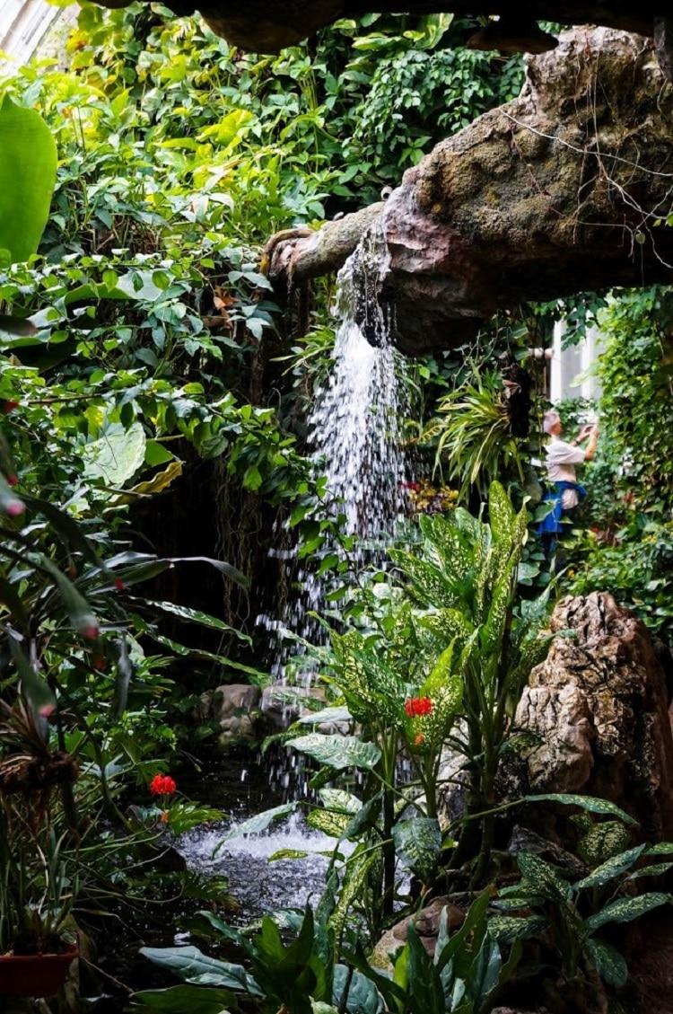 Cascadă din interiorul Casei Fluturilor